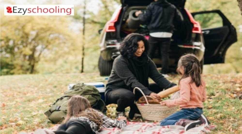 Importance of picnics