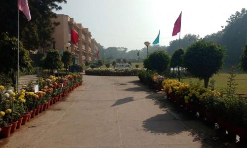 Delhi Public School,Vasant Kunj1