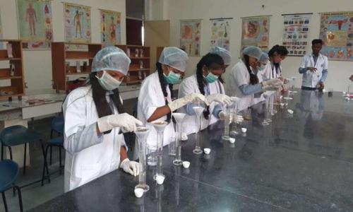 Seemax International School2