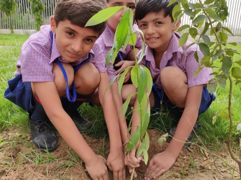 Bharat International Public School0