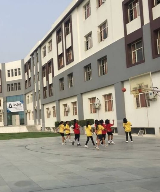 Aster Public School1