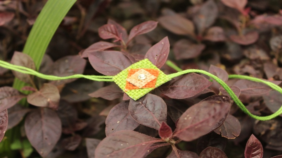Use Rakhis which are eco-friendly