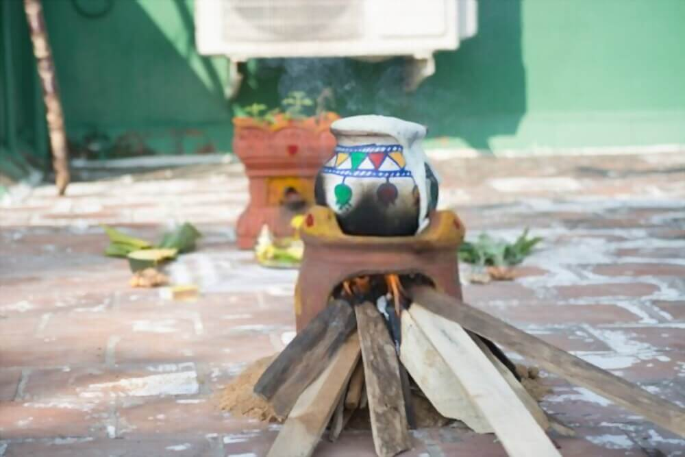 pongal festivals of india